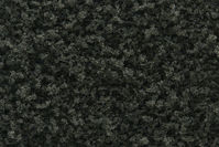Darń - Conifer Green Coarse Turf - Image 1